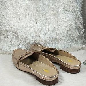 Volatile leather shoe